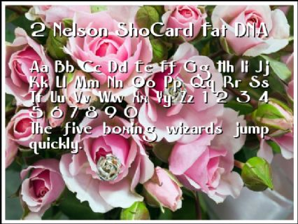 2 Nelson ShoCard Fat DNA Font Preview