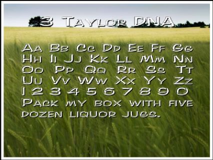 3 Taylor DNA Font Preview