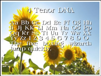 4 Tenor DNA Font Preview