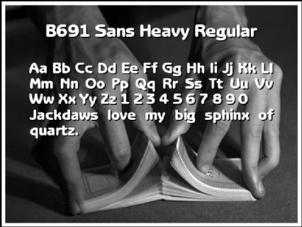 B691 Sans Heavy Regular Font Preview