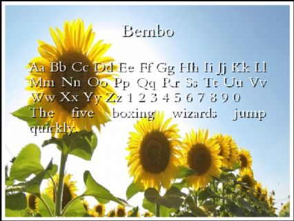 Bembo Font Preview