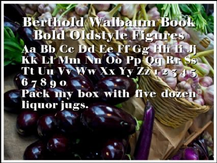 Berthold Walbaum Book Bold Oldstyle Figures Font Preview