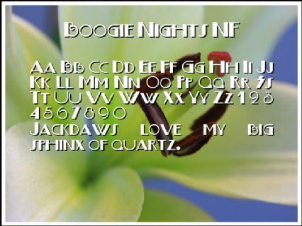 Boogie Nights NF Font Preview