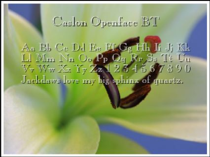 Caslon Openface BT Font Preview