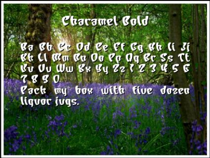 Charamel Bold Font Preview
