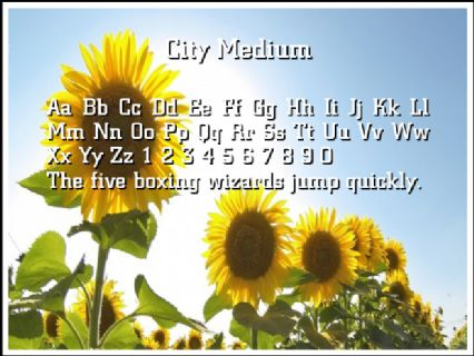 City Medium Font Preview