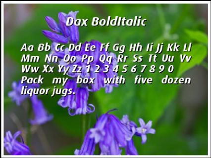 Dax BoldItalic Font Preview