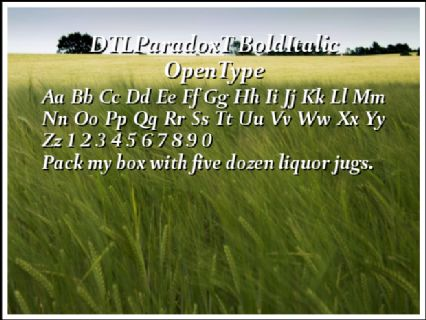 DTLParadoxT BoldItalic OpenType Font Preview