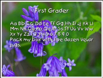 First Grader Font Preview