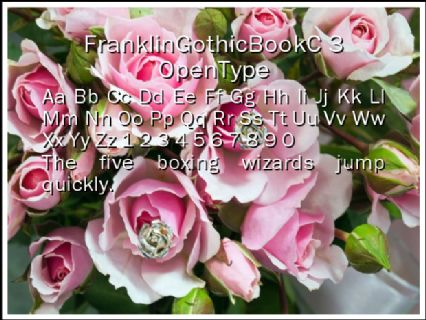 FranklinGothicBookC 3 OpenType Font Preview