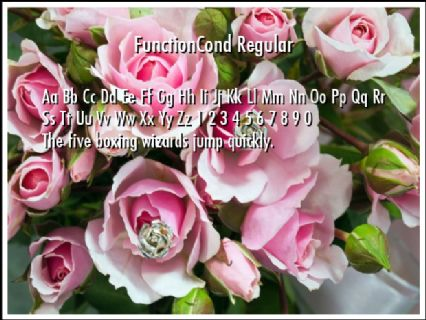 FunctionCond Regular Font Preview
