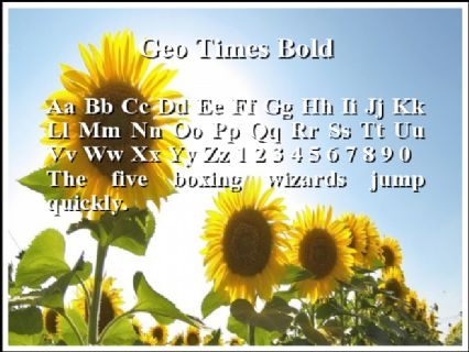 Geo Times Bold Font Preview