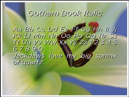 Gotham Book Italic Font Preview