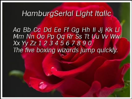 HamburgSerial Light Italic Font Preview