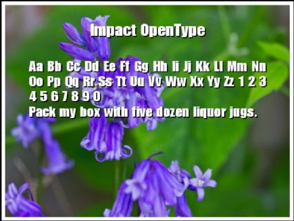 Impact OpenType Font Preview