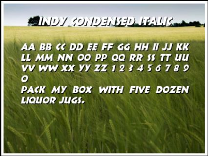 Indy Condensed Italic Font Preview