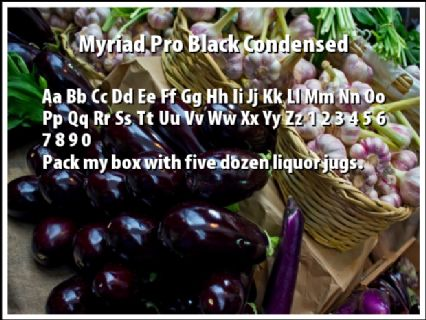 Myriad Pro Black Condensed Font Preview