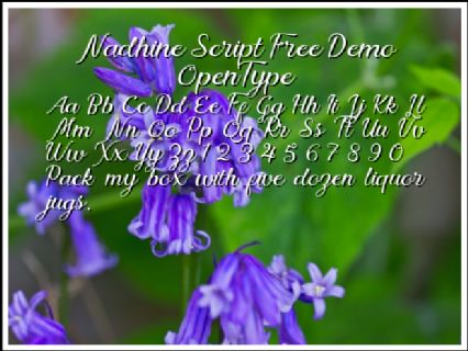 Nadhine Script Free Demo OpenType Font Preview