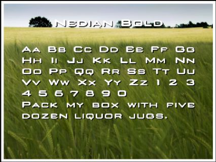 Nedian Bold Font Preview