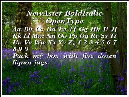 NewAster BoldItalic OpenType Font Preview