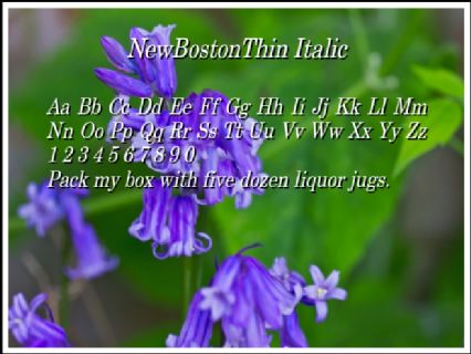 NewBostonThin Italic Font Preview
