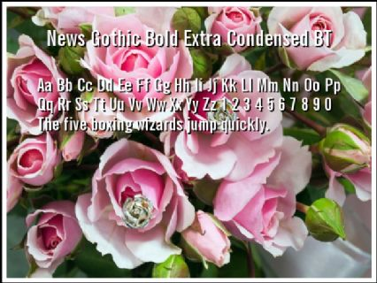 News Gothic Bold Extra Condensed BT Font Preview