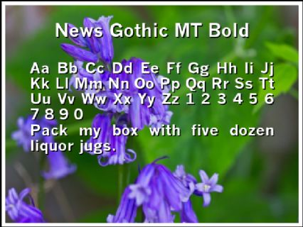 News Gothic MT Bold Font Preview