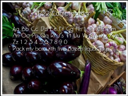 P22 Eaglefeather Font Preview