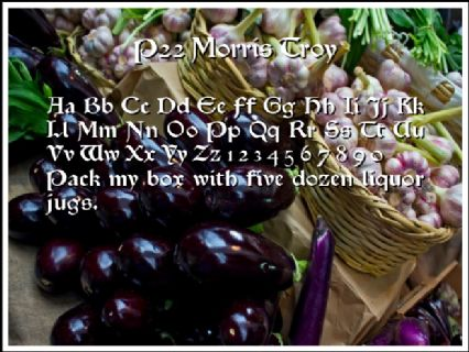 P22 Morris Troy Font Preview