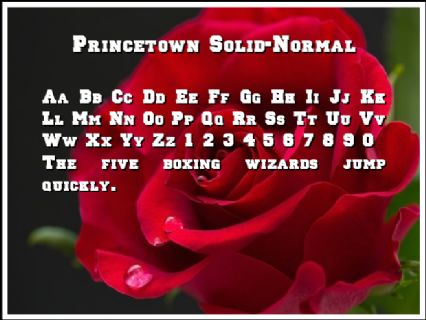 Princetown Solid-Normal Font Preview