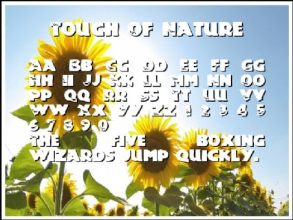 Touch Of Nature Font Preview