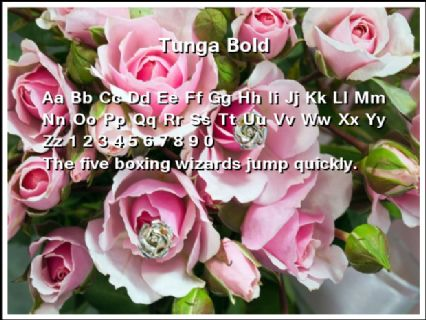 Tunga Bold Font Preview