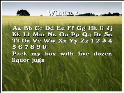 Windsor Font Preview