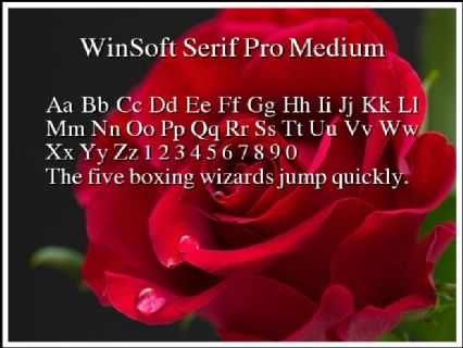 WinSoft Serif Pro Medium Font Preview